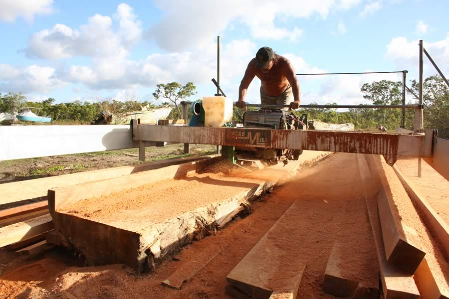 cutting_timber_on_ Lucas_mill